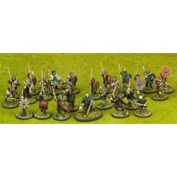 Anglo-danish Warband...