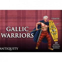 Gallic Warriors (48)