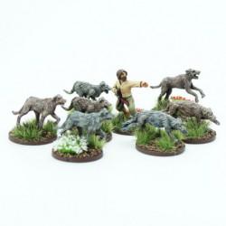Irish Handler and Warhounds
