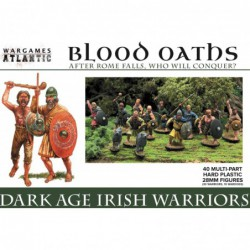 Dark Age Irish Warriors (40)